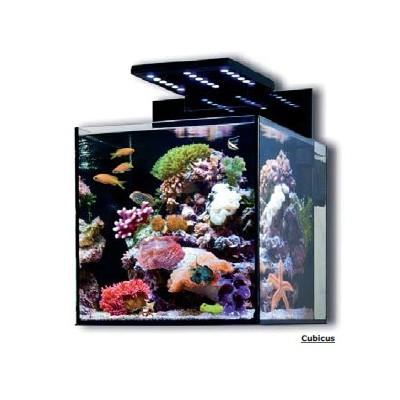 Akvariji